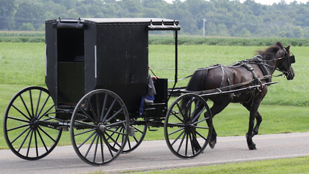 Amish in Amish country